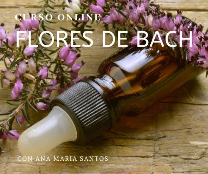 curso online flores de bach