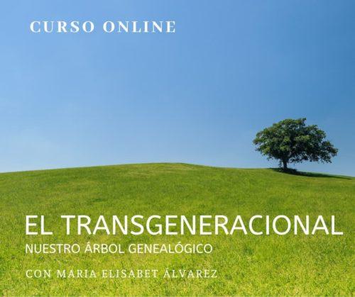 curso online transgeneracional