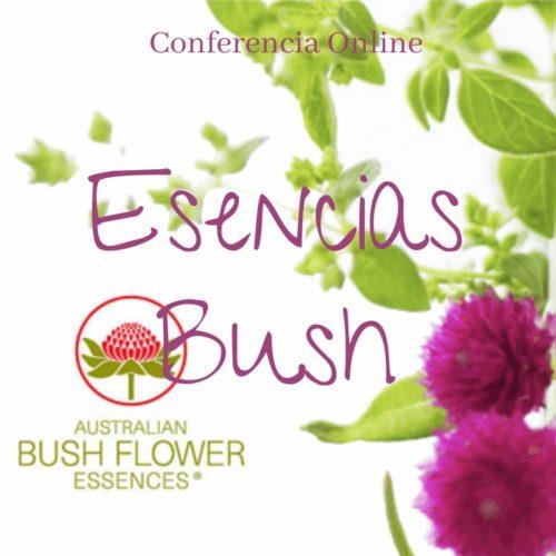 curso esencias bush