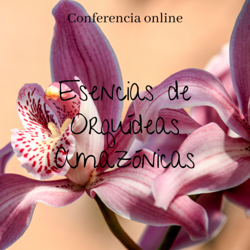 curso esencias de orquideas